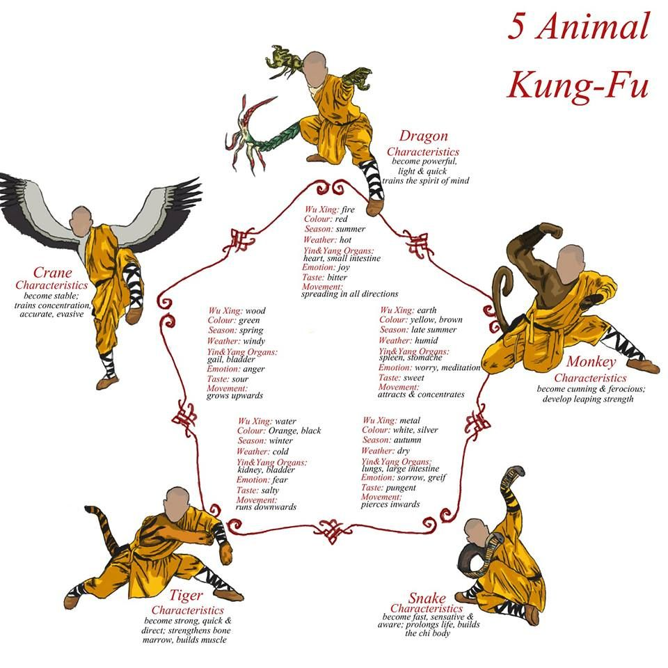 reference for 5 animal kung fu 100 followback at real martial arts [ 960 x 960 Pixel ]