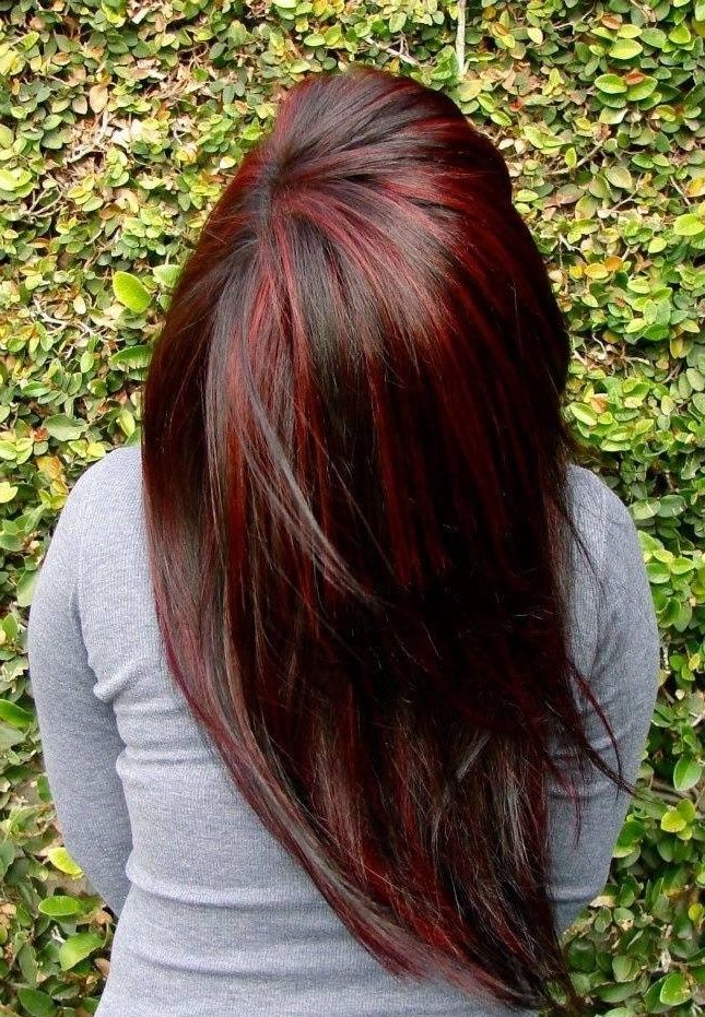 dark brown hair with red lowlights wwwpixsharkcom