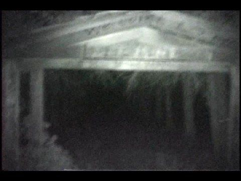 A ghost sighting that was captured without the guy even seeing it, at the time, what do you think it was?