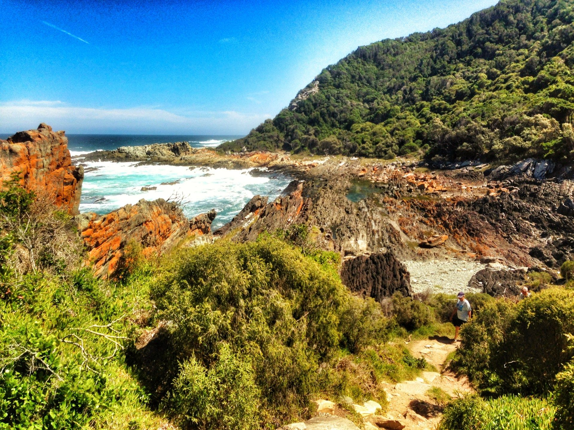 Garden Route Nature and Wildife Itinerary Mountain