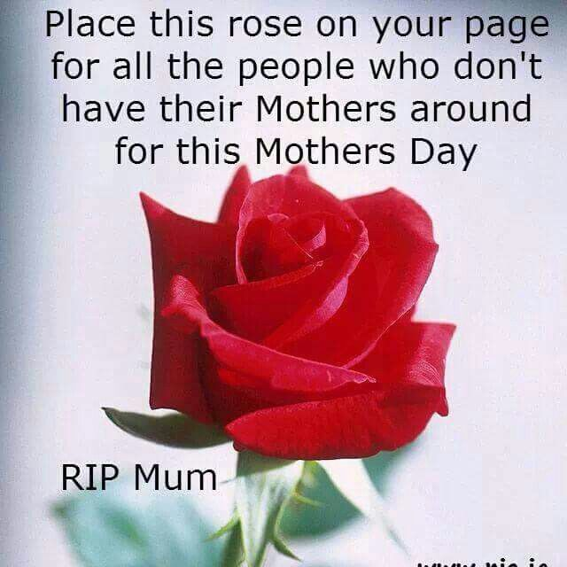 Mothers day RIP | Happy Everything | Happy mothers day mom, Mom i