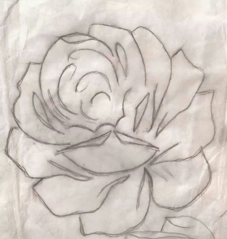 Rosa 1 Risco Desenhos De Flores Riscos De Rosas E Rosas