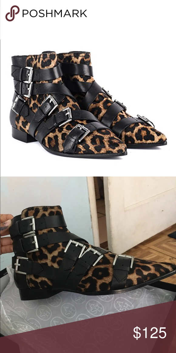 2030ae17bf72 Ash blast leopard booties. Brand New
