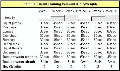 circuit training training plan data wiring diagrams