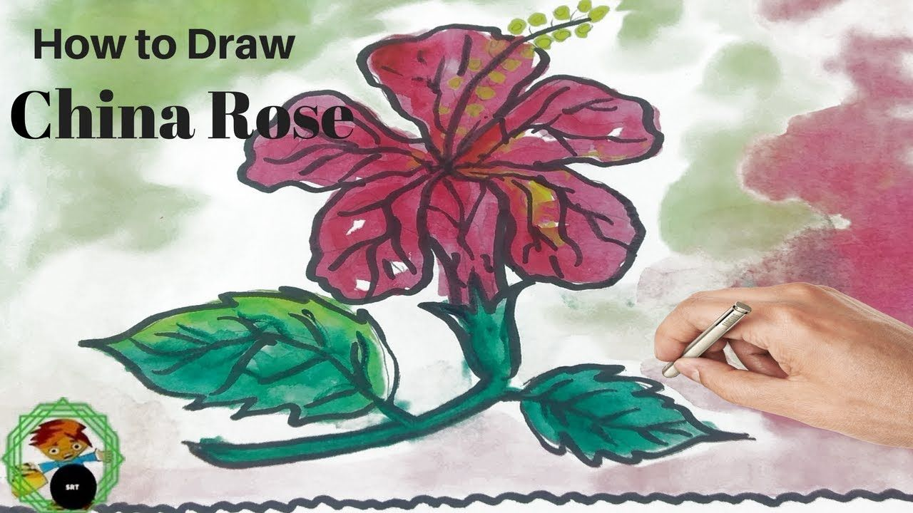 Drawing China Rose For Learning Colors Coloring Book And Painting With Watercolor For Children Easy Https Youtu Be China Rose Coloring Books Learning Colors