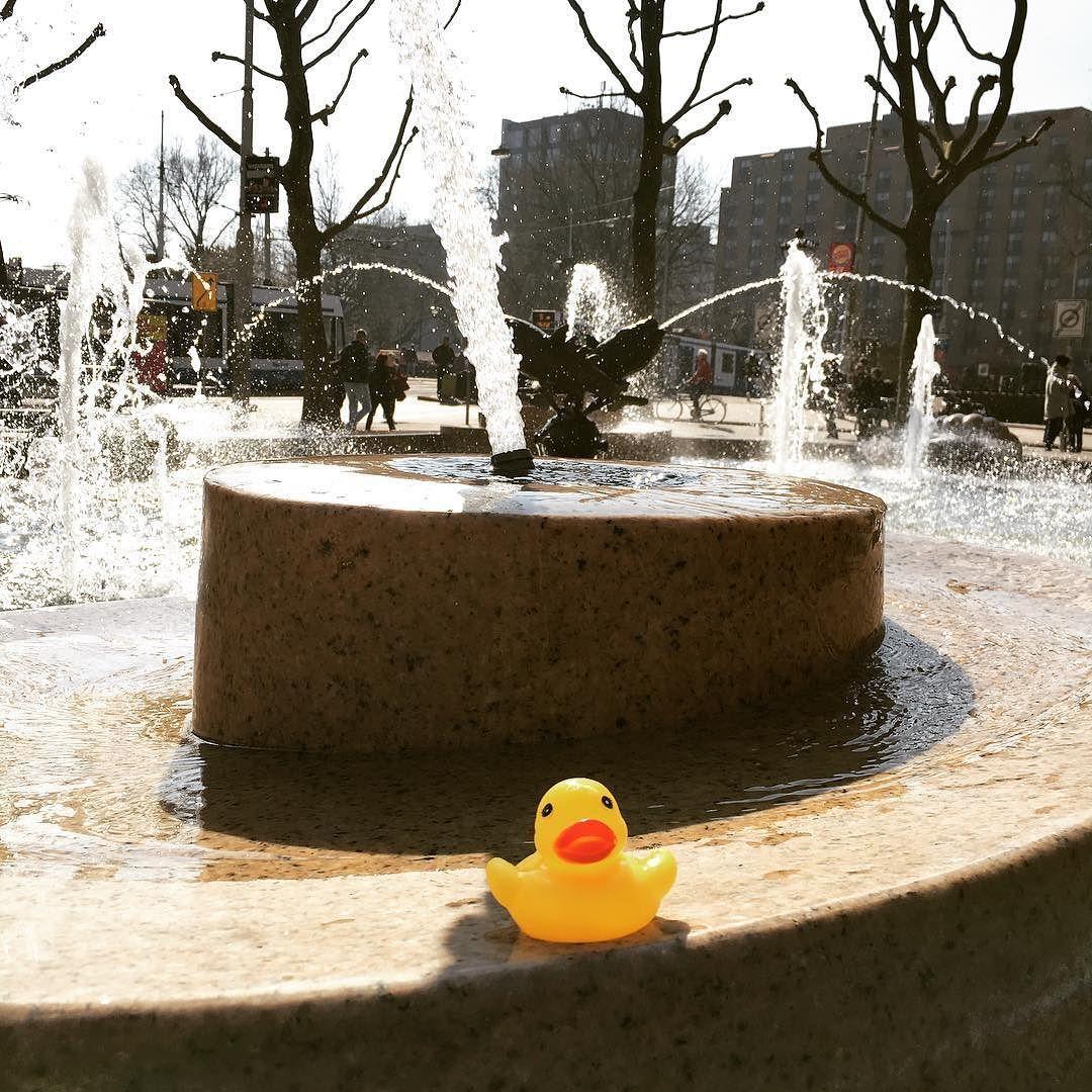 Ducking around #duck #rubberduck #fountain #sunshine #water ...