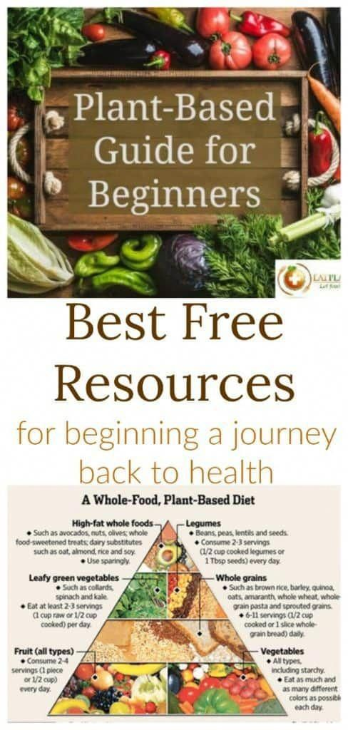 So you have made the big decision to take control of your health and join the whole food plant-based diet movement. Congratulations! You have just made one of the best decisions of your life! This Plant-Based Diet Beginners Guide should help you get started.