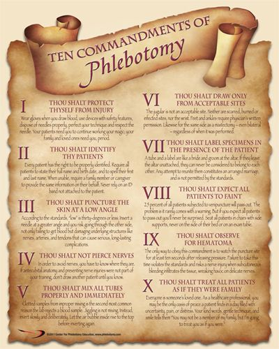 Check Out The Deal On Ten Commandments Of Phlebotomy Poster At