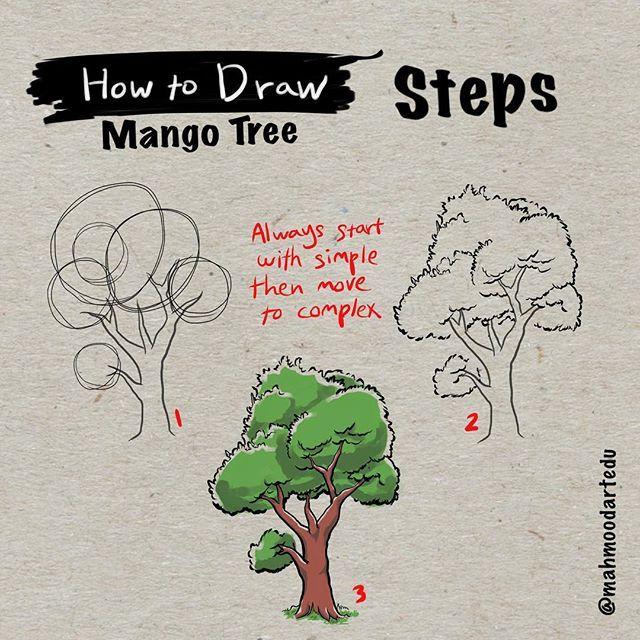 كيف ترسم شجرة المانجو الجزء الخامس الخطوات How To Draw Mango Tree Part 5 Steps إبدء دائما بالأبسط Art Edu How To Draw How To Draw Steps Draw Drawings