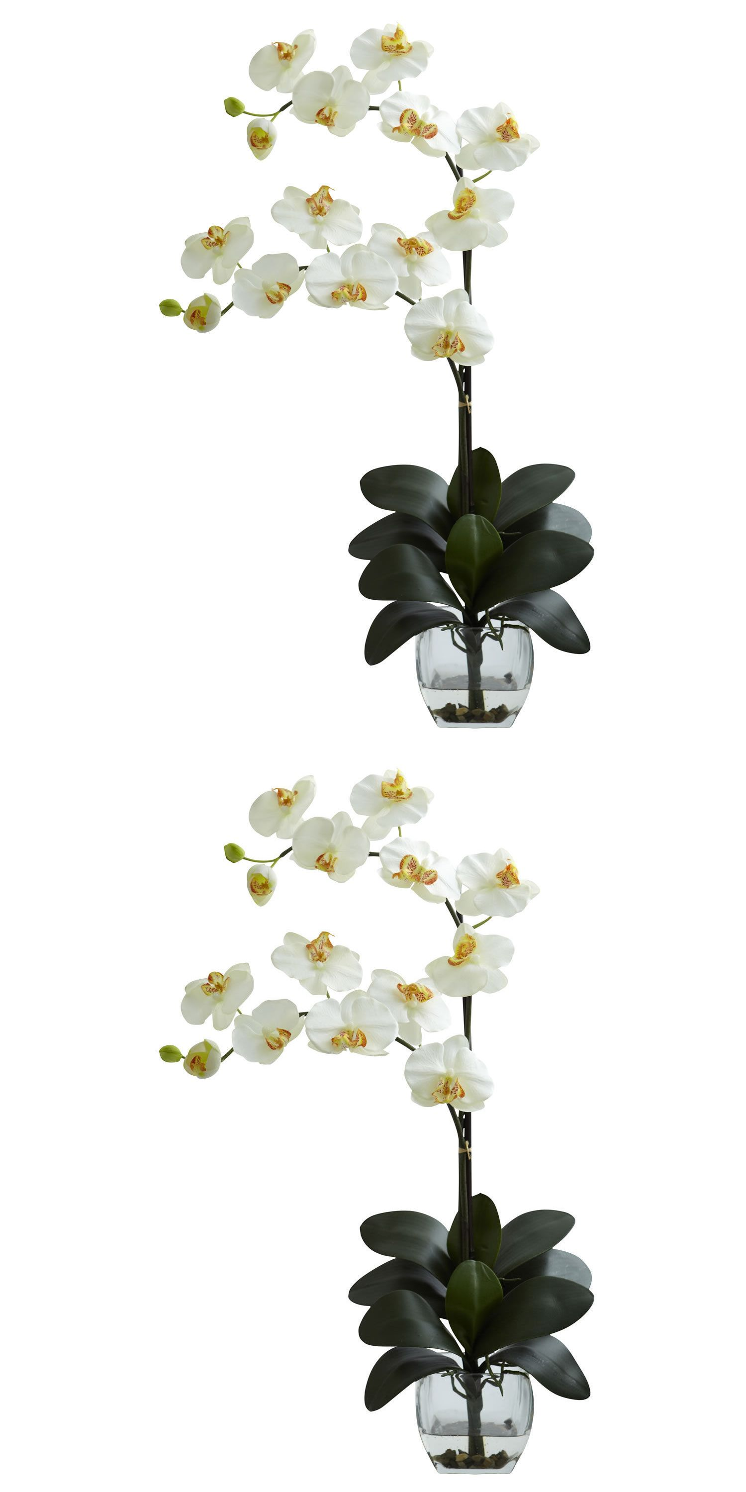 Silk flowers 16494 new double phal orchid vase arrangement craft silk flowers 16494 new double phal orchid vase arrangement craft home decor floral arts silk reviewsmspy