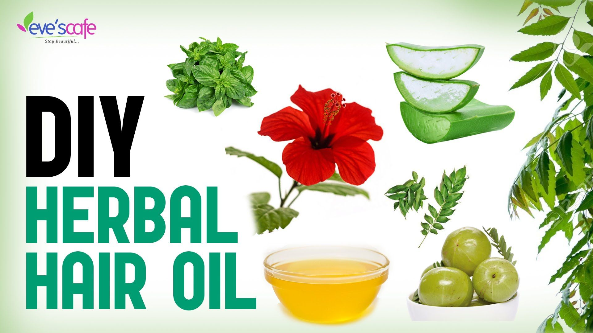 Herbal Hair Oil Preparation For Hair Growth and Stops Hair