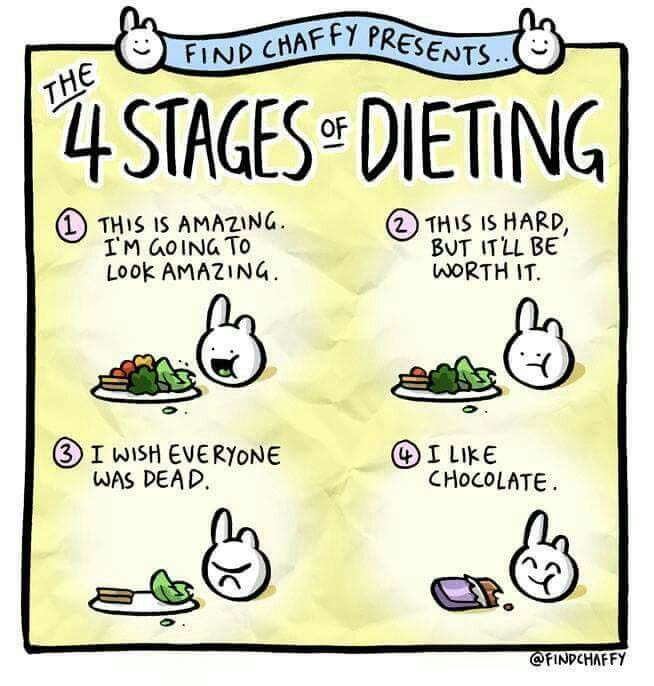 4 stages of dieting