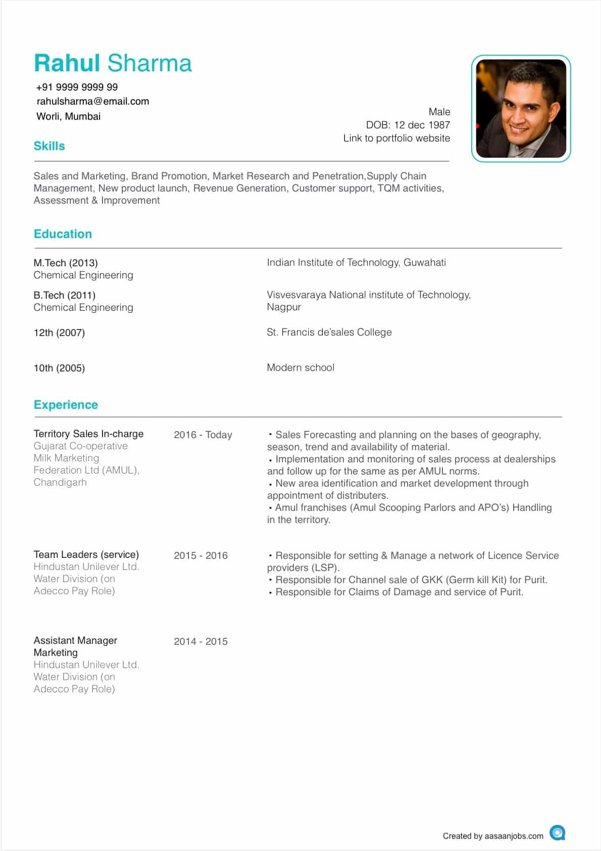 resume format for it jobs