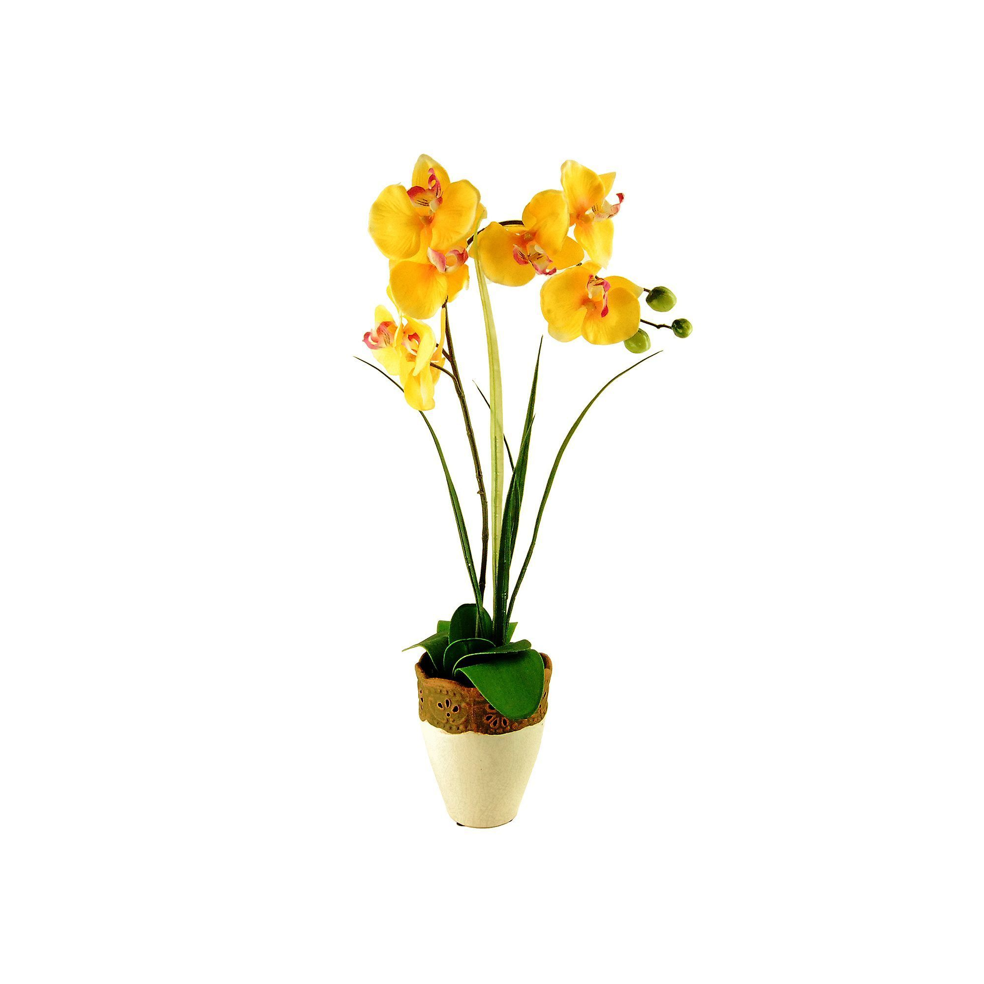 Designs by lauren artificial phalaenopsis orchid u grass plant