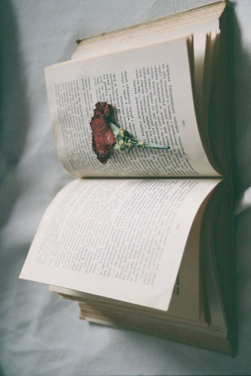Flower pressed in book., just put a person coming out of the book, just think about it