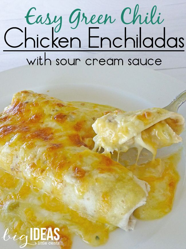 Quick And Easy Green Chili Chicken Enchiladas With Sour Cream Sauce Recipe This One Is Super Delicious Big Ideas Little Cents Mexican Food Recipes