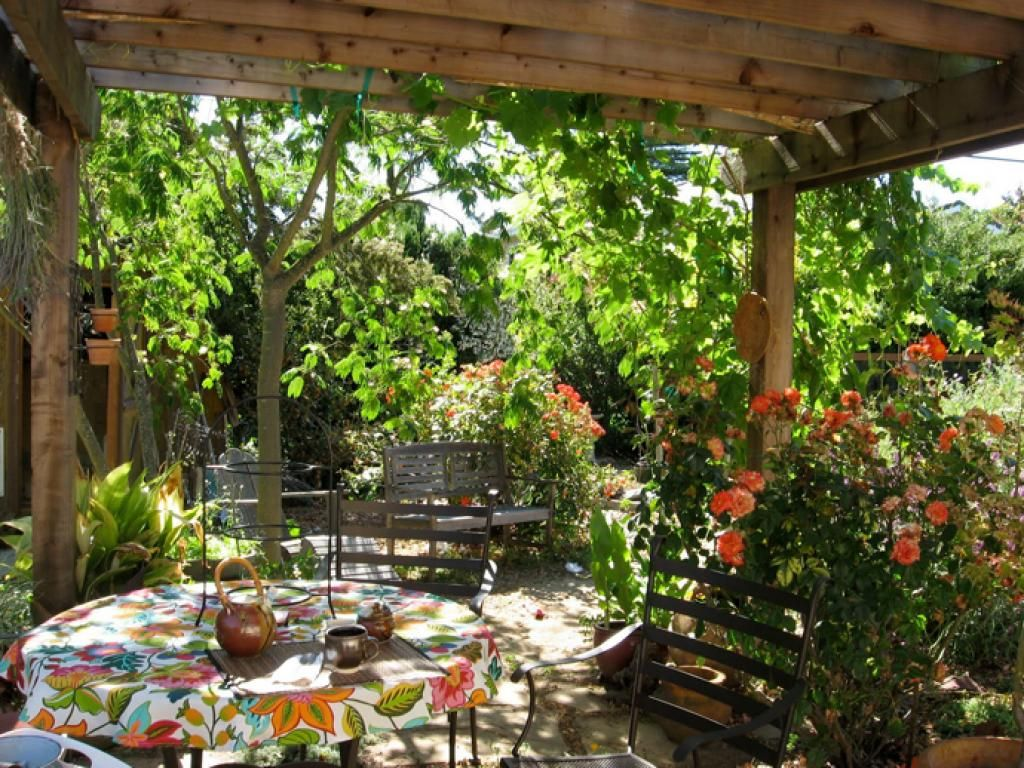 Tropical Outdoor Living And Garden Pergola With Variety Of Flowers ...