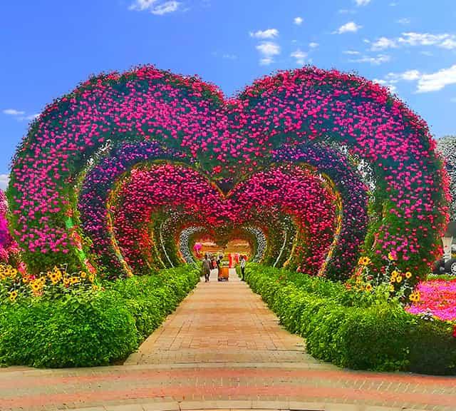 Dubai Miracle Garden Miracle garden, Flower garden