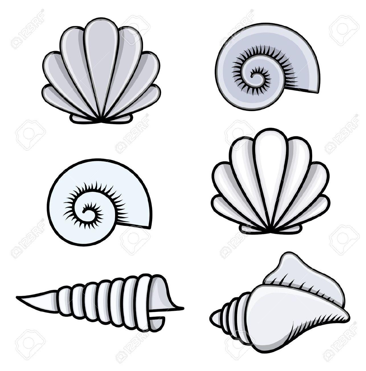Bildresultat för sea shells cartoon | Ocean BG | Pinterest ...