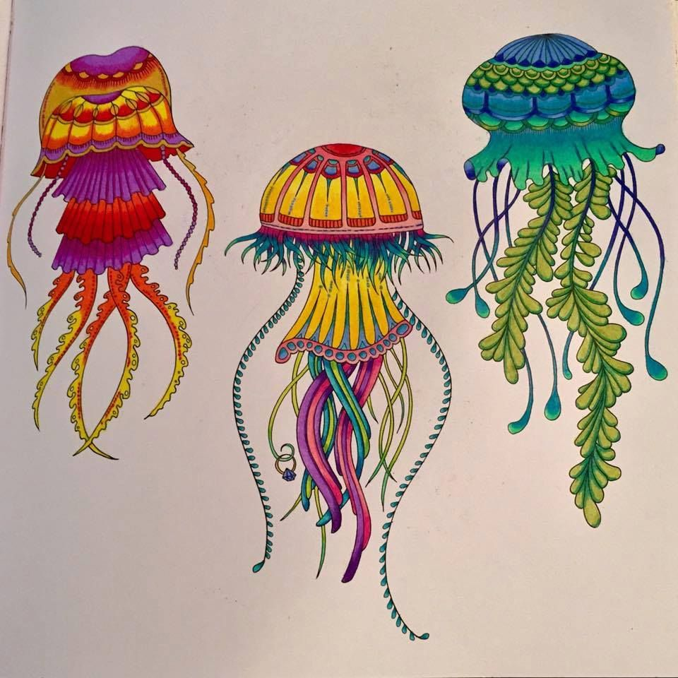 Coloring pages jellyfish - Jellyfish Inspirational Coloring Pages