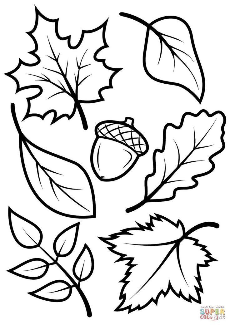 Fall Coloring Pages For Kids Fall Leaves And Acorn Coloring Page Free Printable Coloring Pages Birijus Com Blattschablone Kostenlose Malvorlagen Herbstblatter Vorlagen