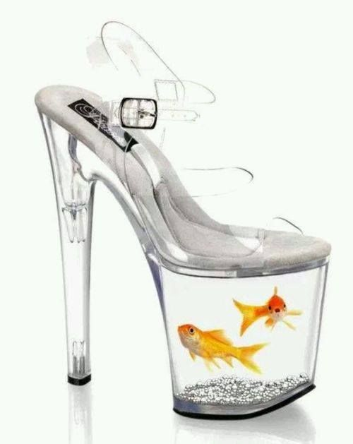 Fish shoes !