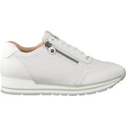Omoda Sneaker 1099k413 Weiß Damen Omoda