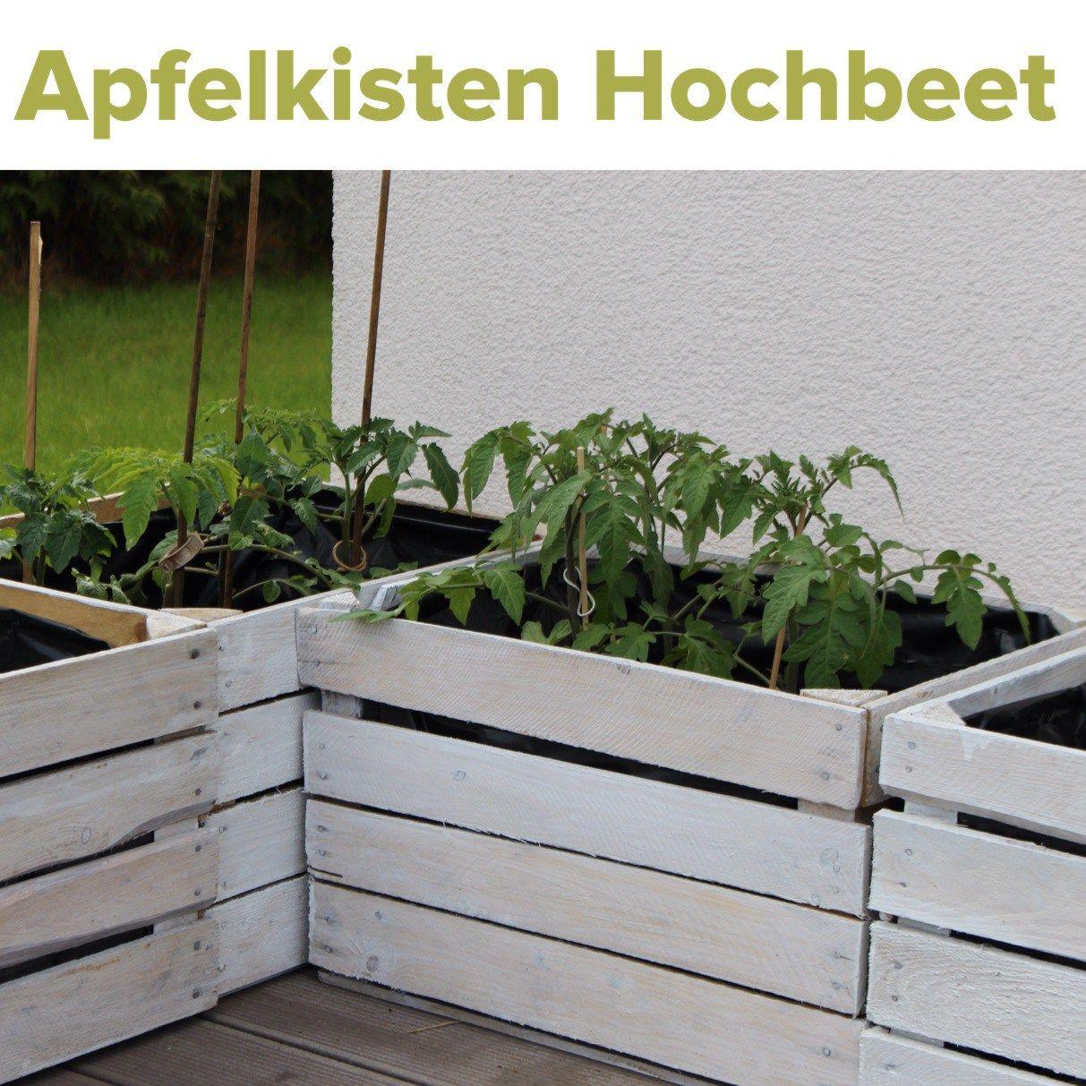 Obstkisten Upcycling Hochbeet Gemusepflanzen Feuerstelle