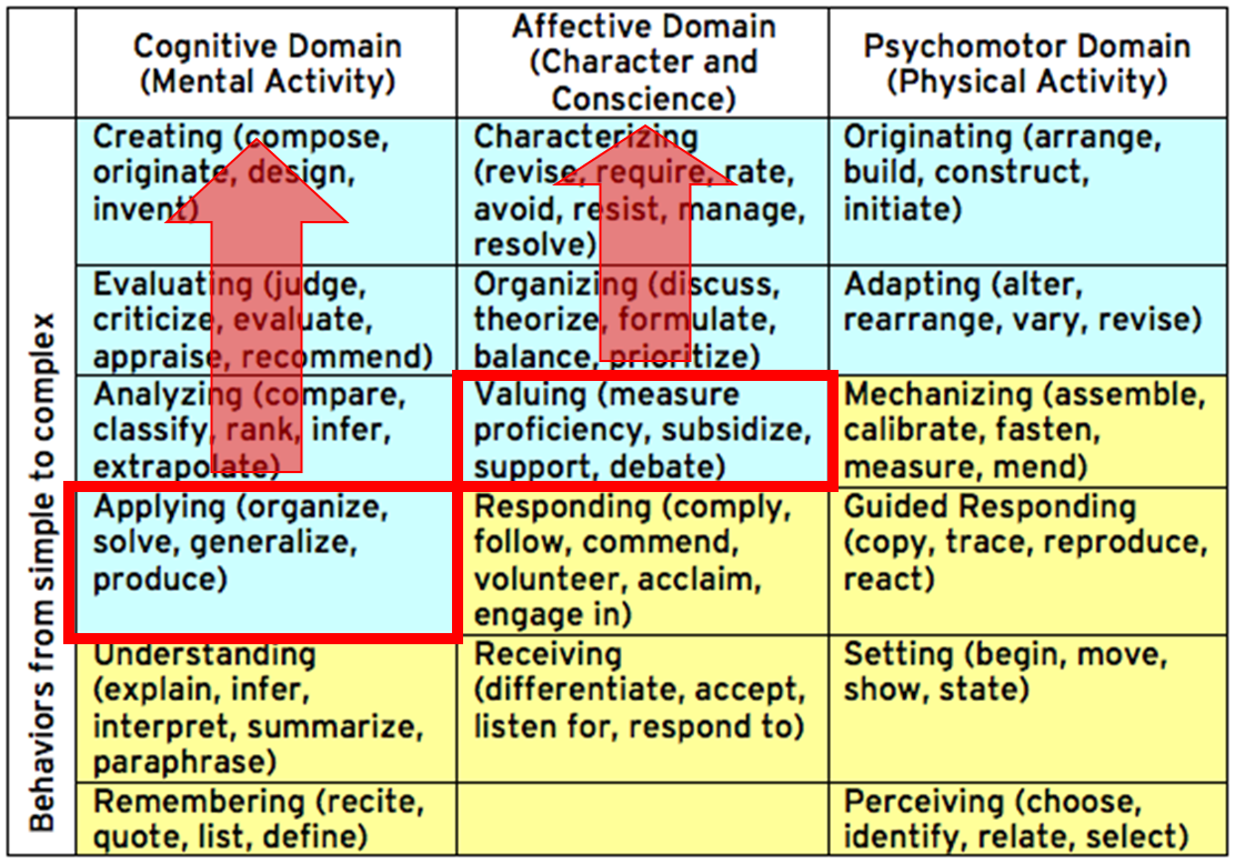 Cognitive Domain Learning