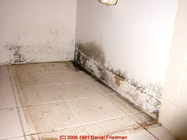 Best Of Daniels Basement Waterproofing