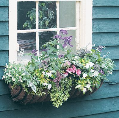 Hayracks 24 Euro Classic Hayrack Planter Wire Basket Only Front Yard Flowers Planters Window Plants