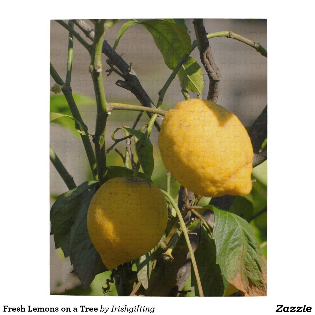 Fresh Lemons on a Tree Puzzles