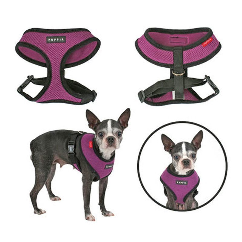 Puppia Harness Dog Harness Dog Boutique Dogs
