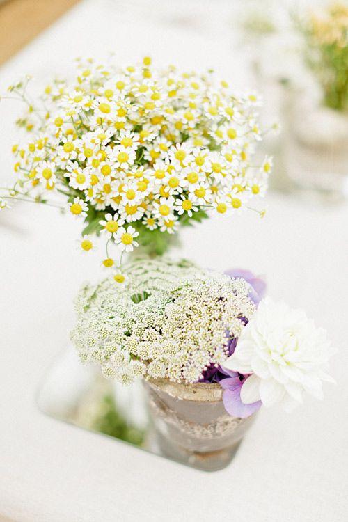 Học cách cắm hoa cúc họa mi đơn giản mà đẹp | Hoa cưới ...