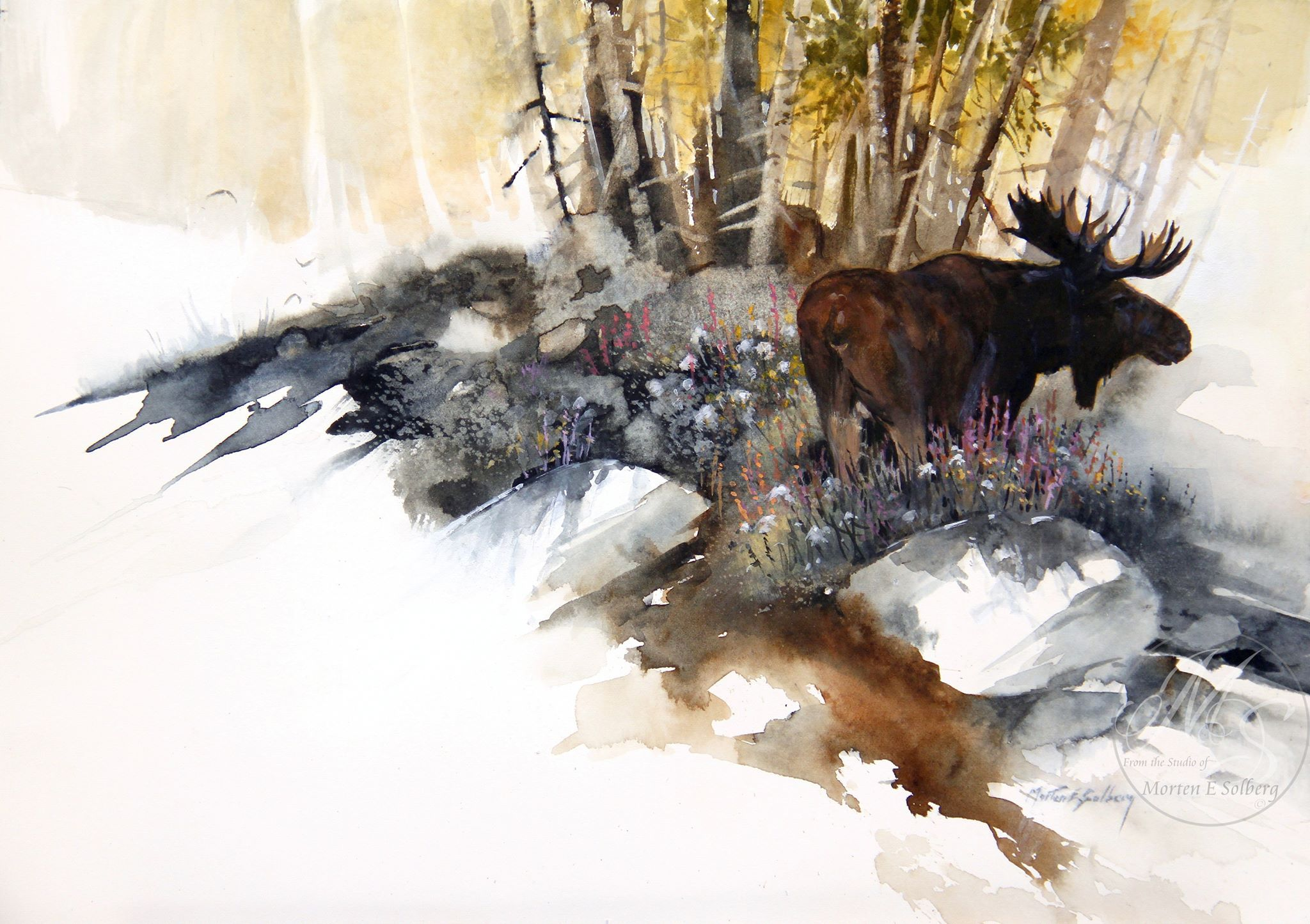 Moose watercolor, Artist?