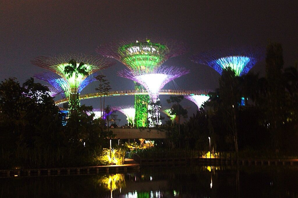 be2e3cc5a732c71a5504909622f2b285 - Free Things To Do At Gardens By The Bay