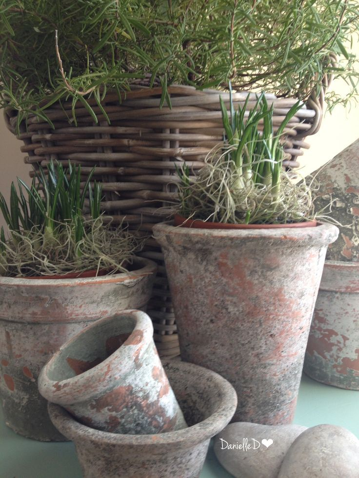 """Beautiful pots, I love the way they""""ve aged"""
