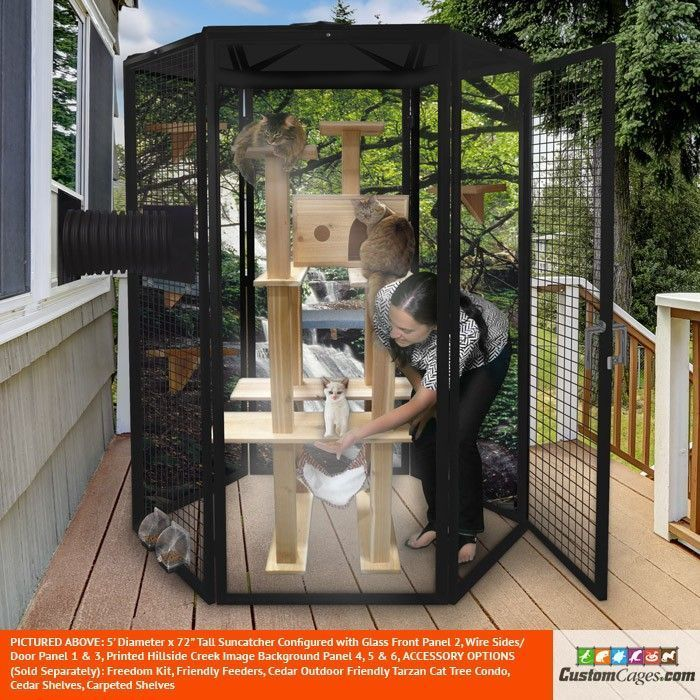 5 IndoorOutdoor Cat Cage  Jennifer Nachtigall   stan goodwin 709