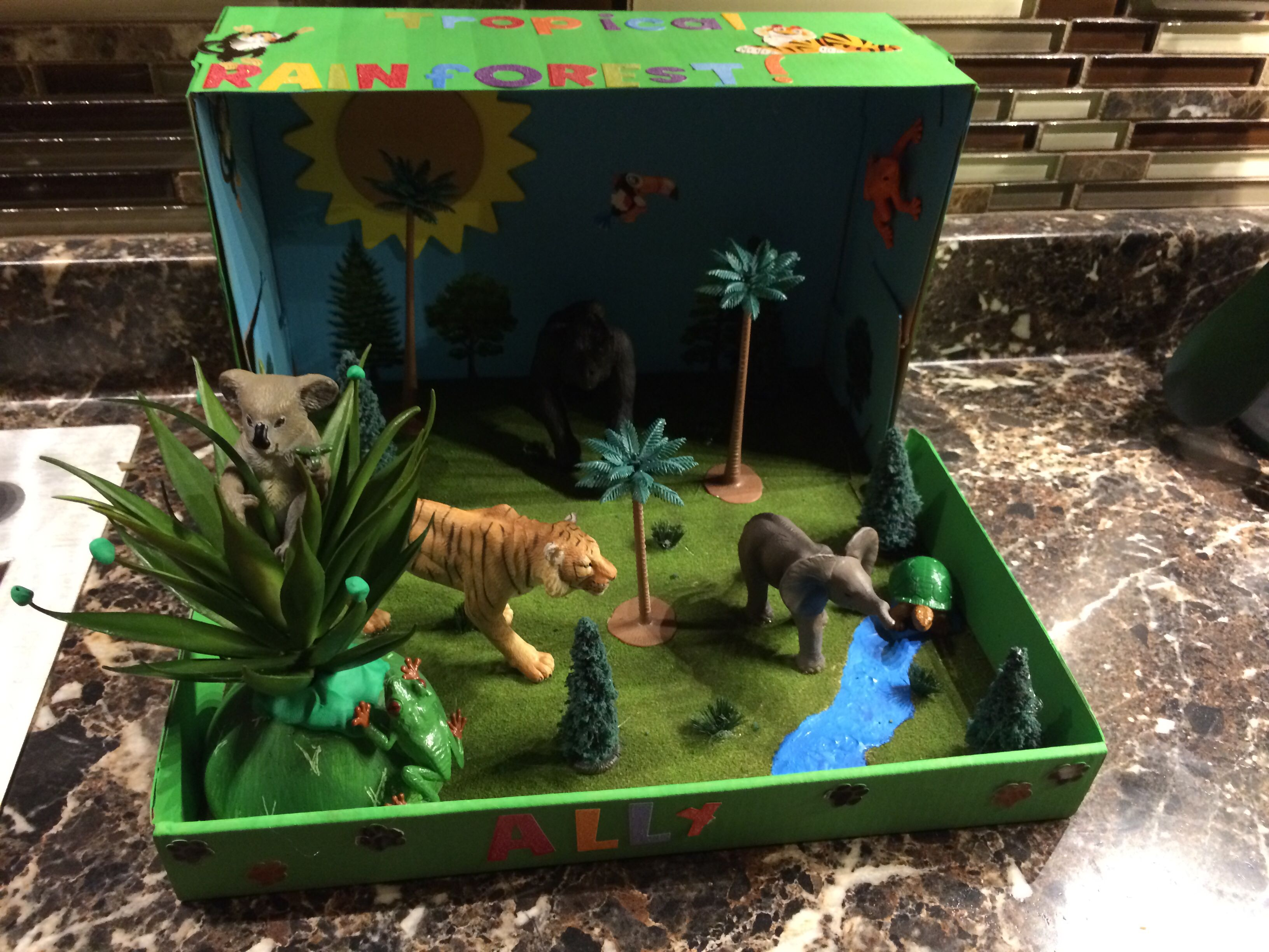 Ally's Tropical rainforest biome project for school