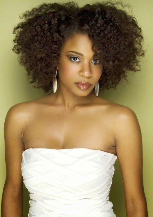 Black Puffy Medium Hairstyle Kinky Curly Hairstyles