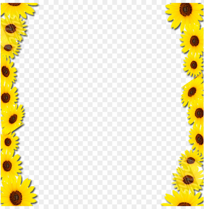 Free Icons Png Sunflower Border Desi Png Image With Transparent Background Png Free Png Images Free Icons Png Free Icons Free Png