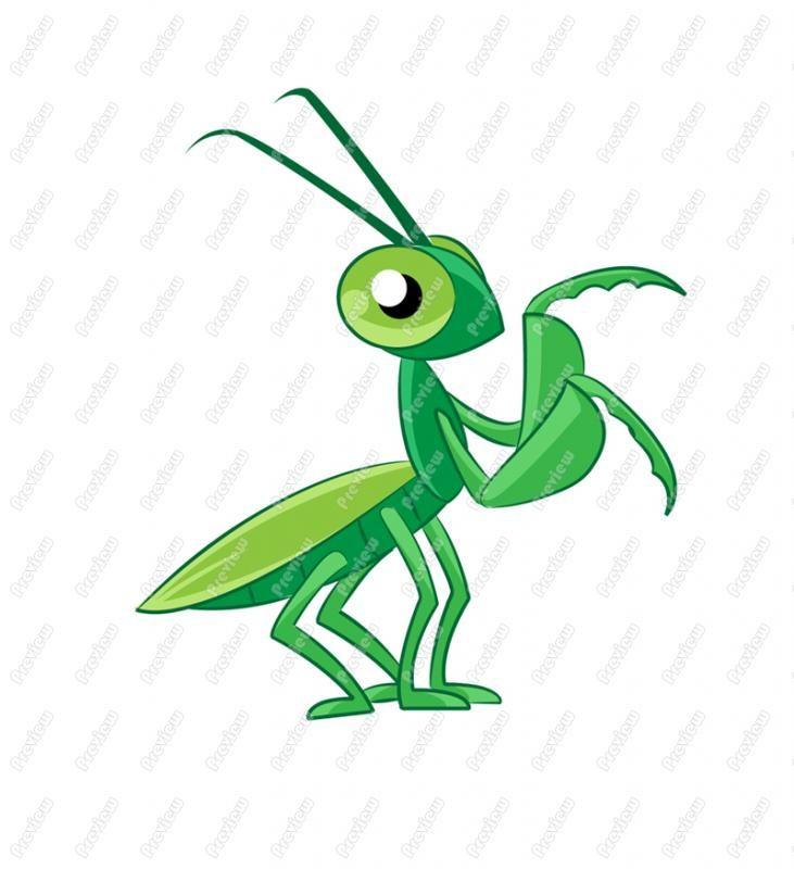 praying mantis drawing step by step