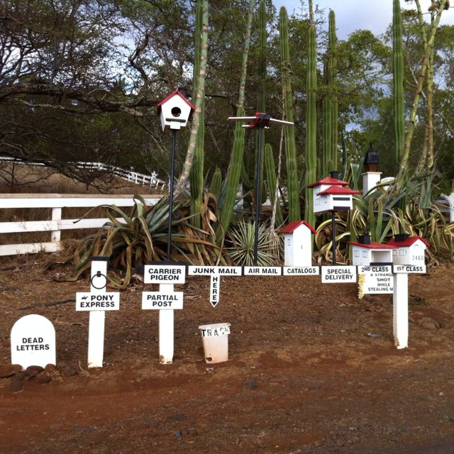 Extensive mail delivery system! Upcountry, Maui, Hawaii.