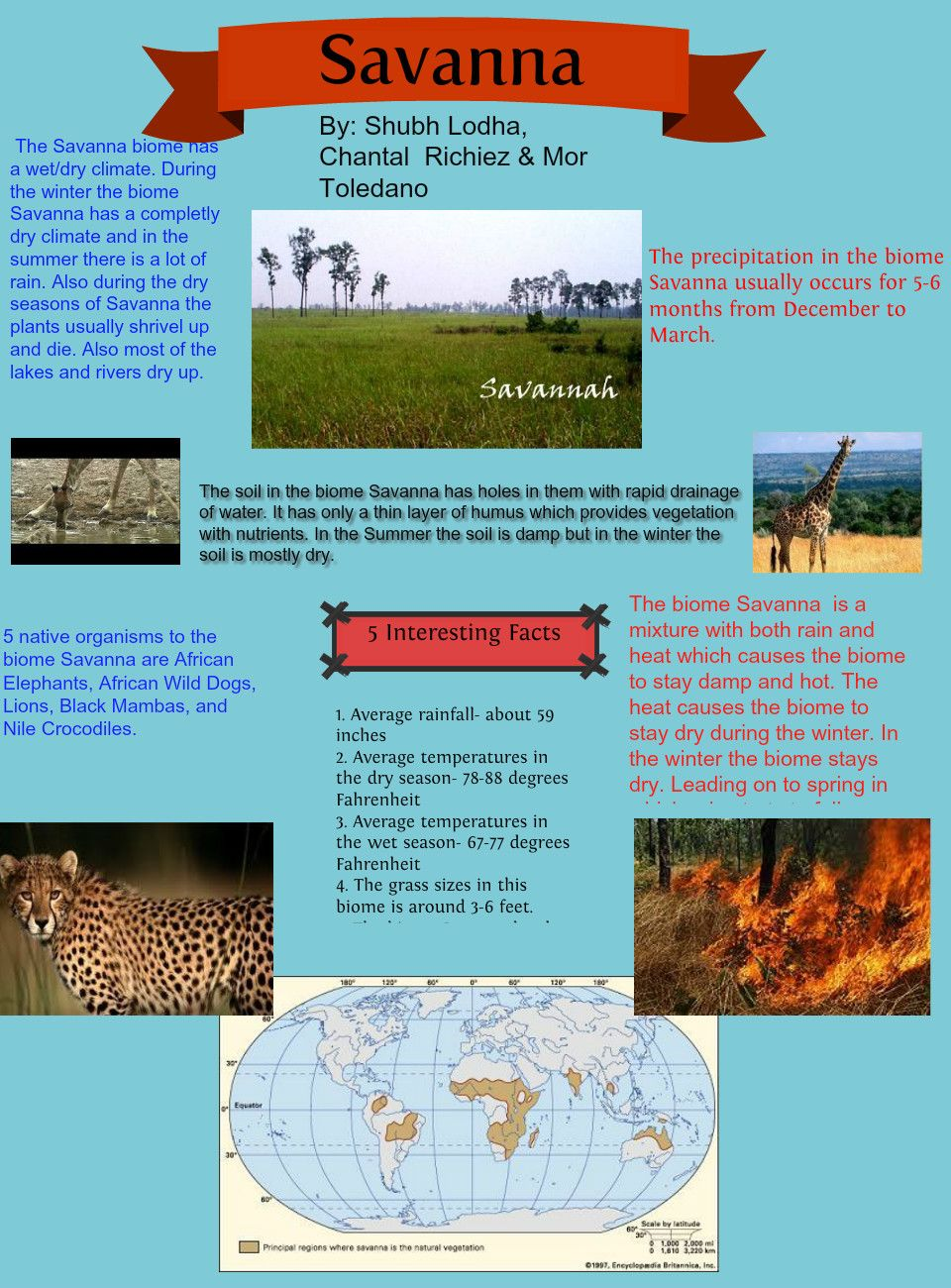 African Savanna Ecosystem Climate Savanna Biome