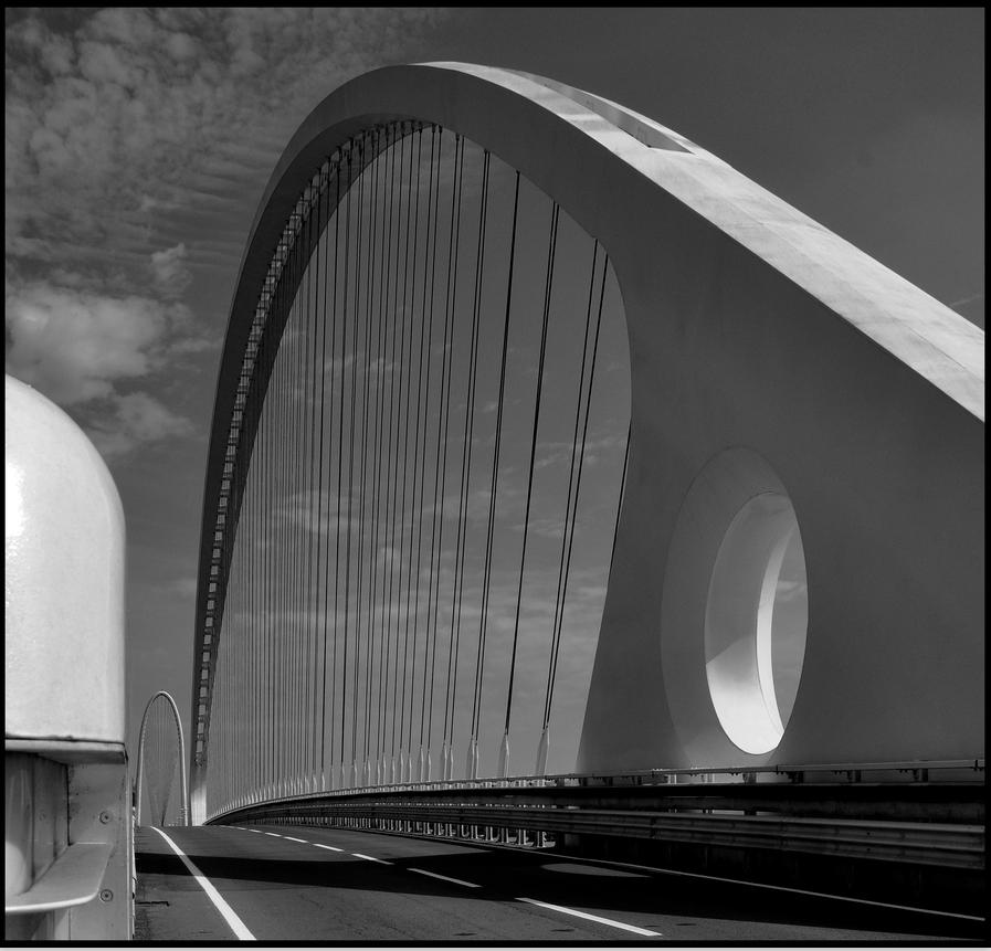 Beautiful Lines - Calatrava Bridge, Reggio Emilia - Immagine & Foto di Luca ...