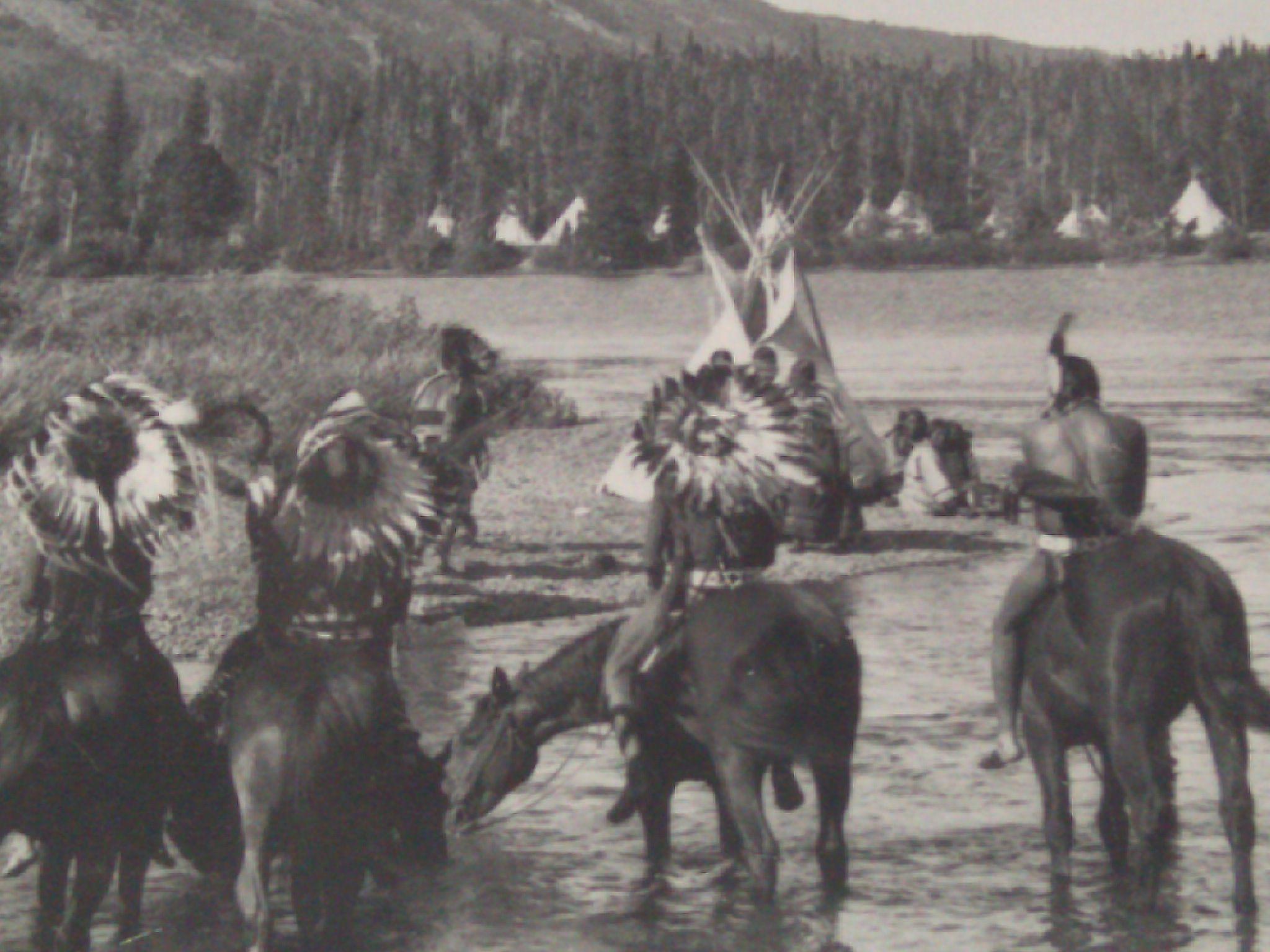 montana native american