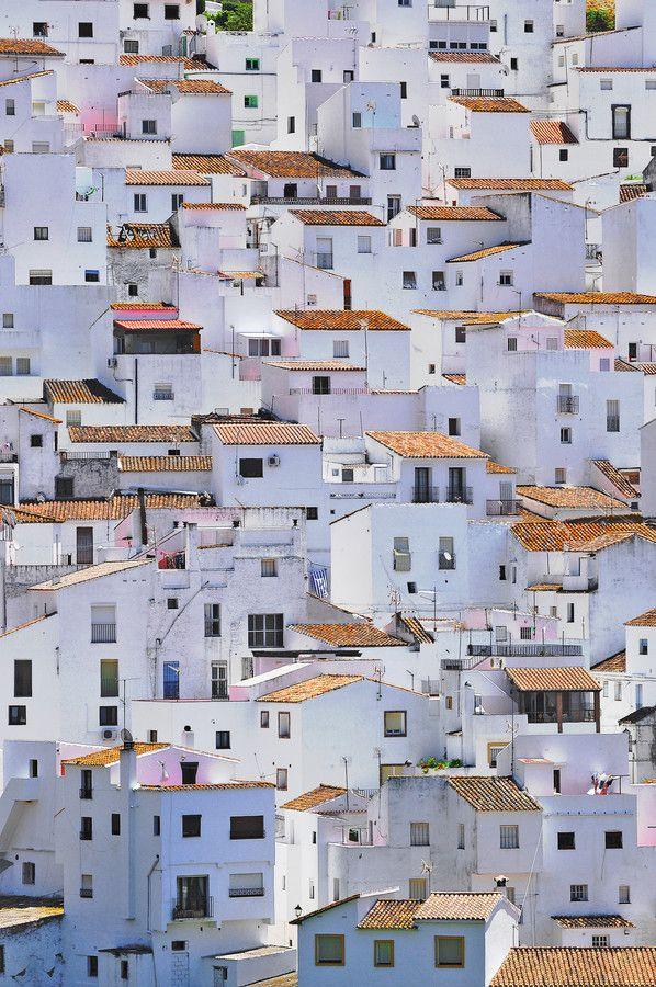 Pure White - Spain.