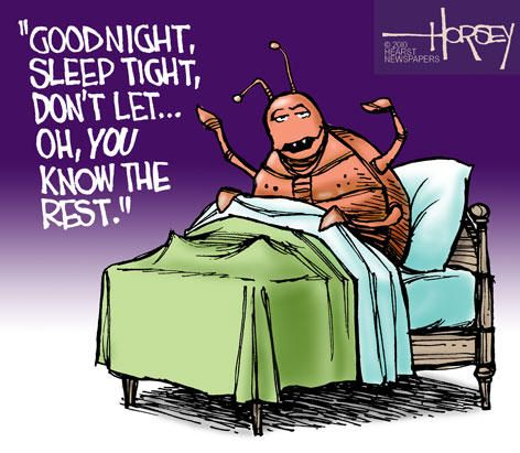 Goodnight Bed Bugs Funny Cartoon Bed Bugs Pinterest Bed Bugs