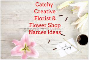 100 Catchy Creative Florist Flower Shop Names Ideas Give A Good Name Flower Shop Names Shop Name Ideas