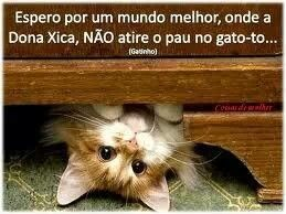 I hope for a better world, where children's songs do not encourage mistreatment of animals♡ ¤ Lovely Cats